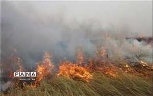 رئیس سازمان محیط زیست:   احتمال  عمدی بودن آتشسوزی تالاب هورالعظیم  وجود دارد