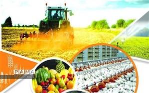 مدیر صنایع کشاورزی البرز: ایجاد ارزش افزوده و افزایش تولید با توسعه صنایع تبدیلی محقق میشود