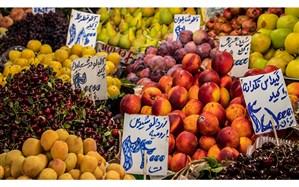 سرخی قیمت میوه در زردی تولید میوههای هستهدار