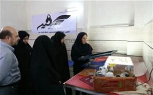مدیرکل دفتر امور اجتماعی و فرهنگی استانداری قزوین :  اشتغال اساسیترین نیاز اقشار آسیبپذیر است