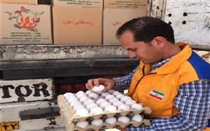 نظارت بر خروج بیش از600 تن تخم مرغ خوراکی به داخل وخارج از استان