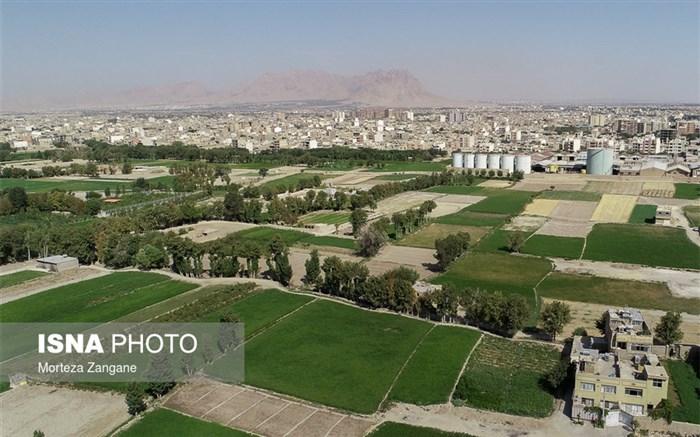 شالیزار در اصفهان بی آب
