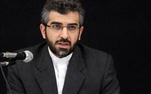 باقری: دادستان کل کشور تعقیب قضایی متعرضان به هواپیمای مسافربری ماهان را پیگیری کند