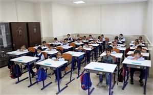 نشست مشترک دو سازمان درباره اجرای آییننامه استقرار مدارس و مراکز غیردولتی