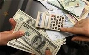 افزایش نرخ ارز توسط دولت، اتهامی بیاساس است