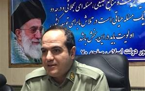 کشف 88قبضه اسلحه و دستگیری 132 متخلف محیط زیستی در فارس