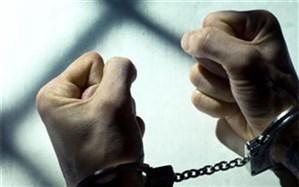 رئیس کل دادگستری فارس اعلام کرد: دستگیری 35 نفر از برهم زنندگان نظم و امنیت در فارس