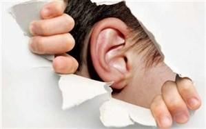 بهره مندی ۵ هزار ناشنوای استان اردبیل از خدمات حمایتی بهزیستی