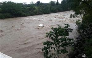 سقوط مرگبار پژو ۲۰۶ به رودخانه در تالش