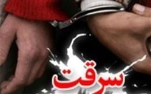 اعضای باند سرقت در گلستان دستگیر شدند
