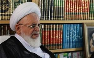 آیت الله ناصری: کارکردهای مساجد به درستی مورد استفاده قرار نگرفته است