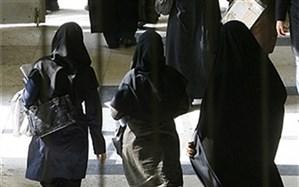 سمیه محمودی پیشنهاد کرد: ایجاد کارگروه مشترک قوه قضاییه و دولت برای رفع ایرادات لایحه تأمین امنیت زنان