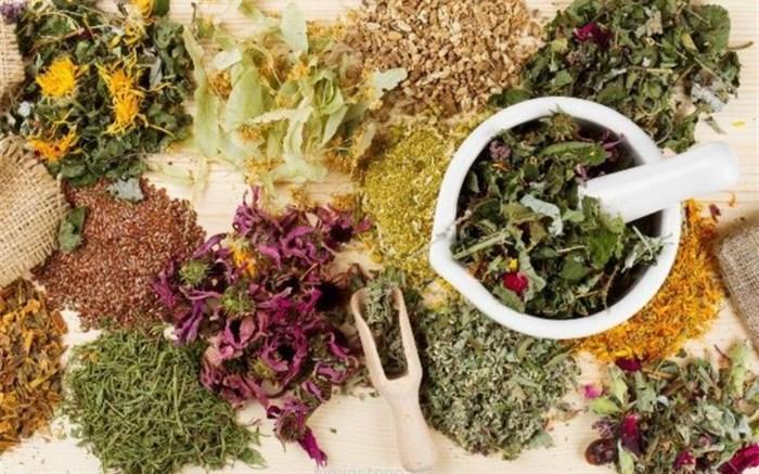 یک کارشناس: در حق گیاهان دارویی ایران ظلم شده است