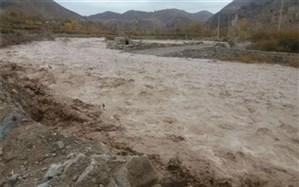 ۲ کشته و ۵ مفقود بر اثر سیل در کشور