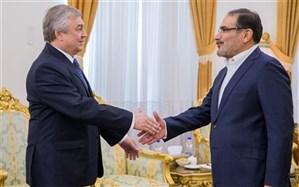 شمخانی:  بازیگری رژیم صهیونیستی تاثیری بر همکاری ایران و روسیه ندارد