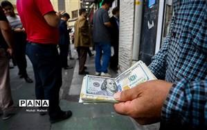خریداران عمده ارز در بازار چه کسانی هستند؟