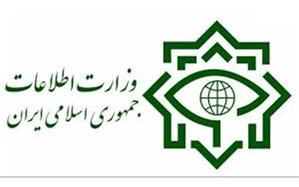وزارت اطلاعات: شبکه سازمان یافتهای  از دلالان  دارویی دستگیر شدند