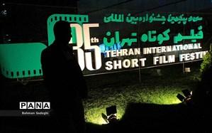 برگزیدگان بخش های مختلف جشنواره فیلم کوتاه تهران مشخص شدند