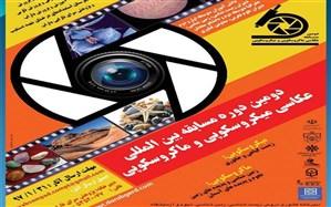 اعلام برگزیدگان بخش داخل کشور دومین دوره مسابقه بین المللی مجازی عکاسی ماکروسکوپی و میکروسکوپی