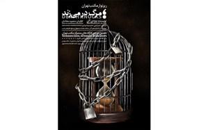 حضور وودی آلن در مکتب تهران قطعی شد