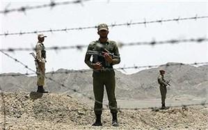 استقبال از ۴  مرزبان ربوده شده درفرودگاه مهرآباد