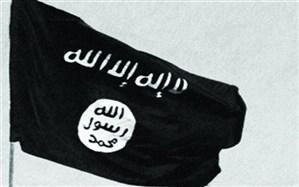 واکنش کدخدایی به هلاکت ابوبکر البغدادی