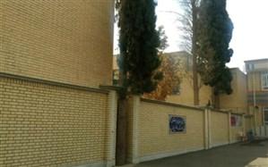 ماجرای سروهای کهنسال حیاط مدرسه در شیراز