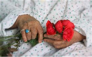 23درصد جمعیت زنان سالمند آذربایجان شرقی تنها زندگی می کنند