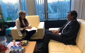 تحولات یمن و سوریه؛ محور گفتگوی جابری انصاری و هلگا اشمید