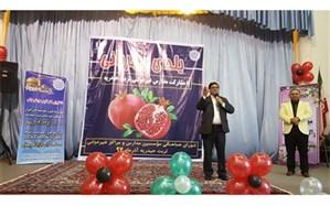 مدیر آموزش و پرورش تربت حیدریه: آیین یلدا نشر مهر و محبت و دوستی در جامعه است