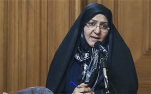 انتقاد رئیس کمیته ایمنی شورای شهر تهران به تاخیر در ارائه یک لایحه