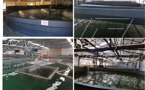 راه اندازی خط تولید قفس توری پرورش ماهی در البرز