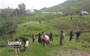 اجرای طرح ملی جنگلانه در لالی با کاشت 300 اصله نهال