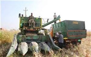 کمباین برداشت ذرت،  عامل مرگ کشاورز دهدشتی  شد