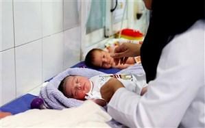 نرخ تولد در سال گذشته، 12 درصد کاهش داشته است
