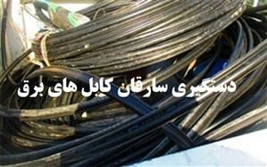 دستگیری سارقان کابل های برق در نظرآباد