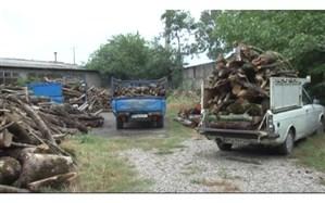 کشف و ضبط 5 تُن چوب قاچاق در کازرون فارس
