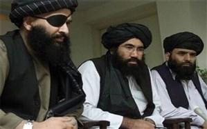 طالبان: سفر به تهران در راستای جلب حمایت سیاسی کشورهای منطقه است