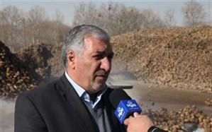 پرداخت بیش از 56 درصد از مطالبات چغندرقند کاران آذربایجان غربی