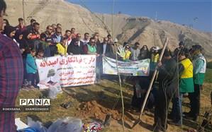 طرح نهال کاری استانی امیدانه در شهرستان امیدیه  انجام  شد