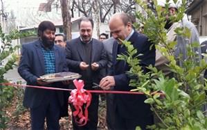 میز خدمت جهاد کشاورزی در کرج افتتاح شد