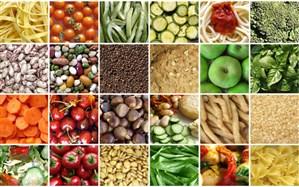 مدیرکل دفتر صادرات محصولات کشاورزی: مشکلات تنظیم بازار را به گردن صادرات نیندازیم
