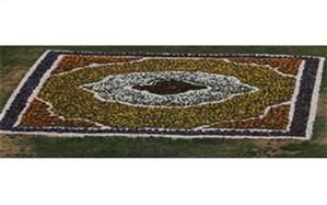 فرش هزار رنگ بنفشه ها زیر پای بهار در ارومیه