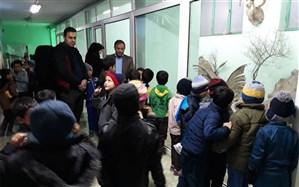 بازدید دانشآموزان پیشتاز از موزه حیات وحش سازمان دانشآموزی استان سمنان