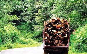 فرماندار ورزقان: سود زیاد، دلیل اصلی قطع و فروش درختان باغی منطقه ارسباران بود