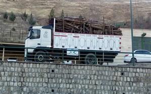 قاچاقیان چوب در تعزیرات حکومتی مهاباد جریمه شدند