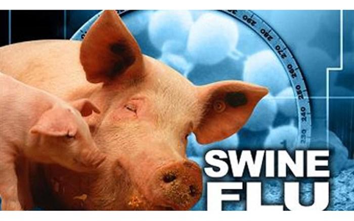 شیوع آنفلوانزای خوکی در گرجستان/ دانشگاه ها نیز تعطیل شد