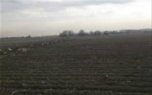 آزادسازی  340 هزارمترمربع از اراضی کشاورزی ملارد