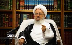آیتالله مکارم شیرازی: مدیریت راهگشای لاریجانی در مجلس، منشا خدمات فراوان بود