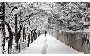 کارشناس هواشناسی استان خراسان جنوبی :یخبندان و سرما در خراسان جنوبی